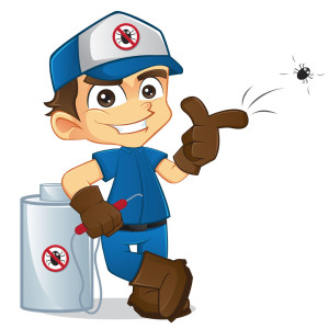 Able Termite Treatment Phoenix AZ