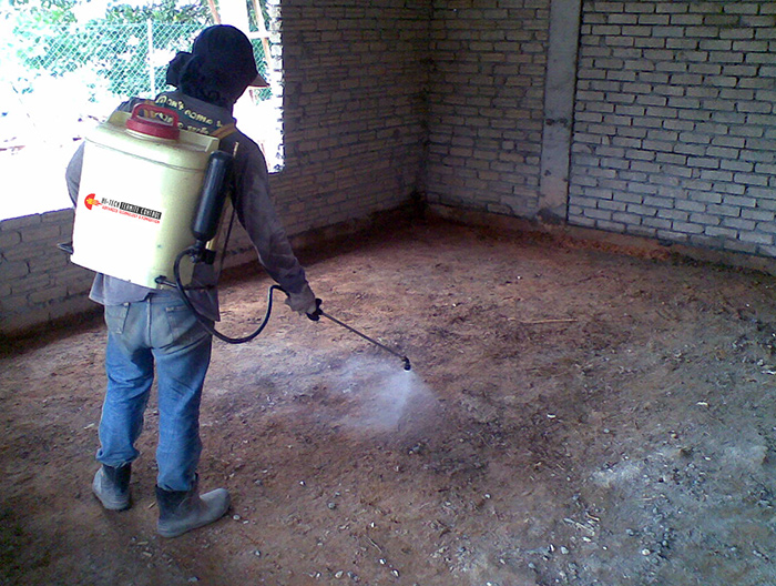 Able Pest Control Termite Treatment