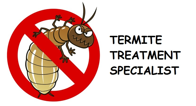 Termite Treatment Phoenix | Exterminator Pest Control